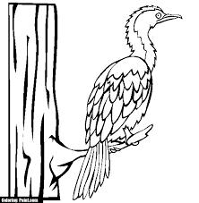 Detail Nice Cormorants Bird Color Page