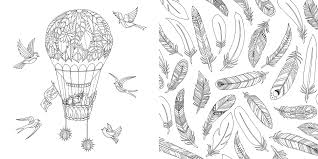 Beautiful Adult Coloring Book Superb In