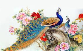 133 Peacock HD Wallpapers