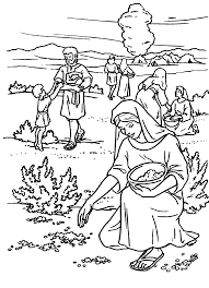 Coloring Sheet Exodus 16 And Dorcas In The Bible Pages