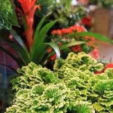 Magnolia Garden Center 77 s & 23 Reviews Nurseries