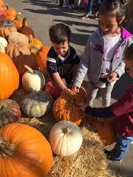 Pumpkin Patch Fresno Clovis by Preschool U0026 Afterschool Child Care Daycare Centers In Fresno