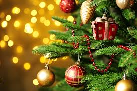 Christmas Tree Preservative Recipe by 7 Ways To Recycle Your Christmas Tree Sb Magazine
