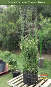 Foodie Gardener Tall Metal Tomato Tower Support Cage