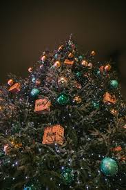 Deer Ticks On Christmas Trees by 160 Best English Christmas Images On Pinterest English Christmas