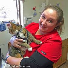 benson animal hospital tucson travels with marshall