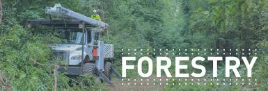 Forestry Equipment - Custom Truck One Source Used Dump Truck For Sales Class 7 And 8 Trucks Sale 2008 Gmc C7500 81 Gas 60 Altec Forestry Bucket Truck Regular Forestry Elevator Bucket Truck Sale Youtube About Midway Ford Center Kansas City New Car F750 Liftall Lss601s 65 Big General Thoughts Bor Consulting Aerial Lifts Bucket Boom Cranes Digger Attenuator What Is It Royal Equipment Chevy Diesel In Ct Perfect Forestry Sel For N Trailer Magazine Ford Tristate Demand Apex Waste And High Hook Lift