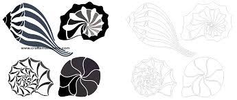 100 Sea Shell Design Shell Design Elements