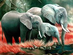 Elephant Drinking Water Nice Painting Wallpaper