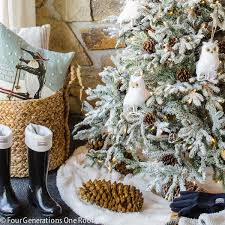 Fraser Christmas Tree Care by Best 25 Fraser Fir Christmas Tree Ideas On Pinterest Balsam Fir