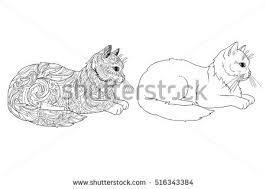 Cat Coloring Book Page Doodle And Outline Decorative Ornamental Animal For Printing On T