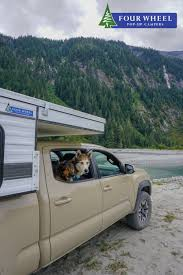 You Can Bring Your Dogs To Everywhere With Just A Pick-up Truck ...