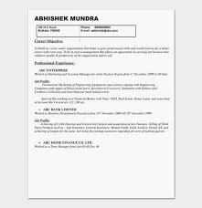 It Manager Resume Examples 27 Product Example