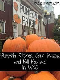 Corn Maze Pumpkin Patch Winston Salem Nc by North Carolina State Vegetable Sweet Potato North Carolina
