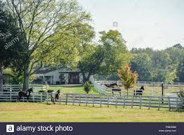 Small Horse Farm, Barn, Paddocks,horses,rural,Tennessee Stock ... Rural Farm House Barn Green Grass Stock Photo Image 63117406 Scobey Photographygreen Wedding Photography Meadows Petting Urbana Md Grand Prairie Tx Dallas Elegant Office 21544048 Shutterstock San Juan Island Historic Barns Of The Islands Sewn And Grown Denver Botanic Gardens Four Years Later Ashley Mckenzie Red Illustration Vector Art Getty Images Hampshire Architecture Portsmouth Milton Fratton Hilsea The Old Barn Oil Pating Landscapes Realism And Trees 31136492