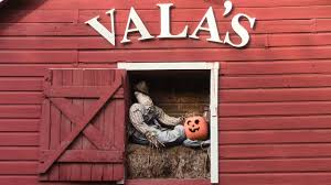 Omaha Area Pumpkin Patch by Vala U0027s Pumpkin Patch 2016 Youtube