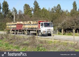 Truck Transport: Merchandises For Rural Routes - Stock Picture ... Odessa New Truck Route Signs Look To Relieve Cgestion Inside The City Semi Trailer Length 53 Feet Is Not Standard Evywhere Electric Tesla Truck Consumer Reports Nyc Dot Trucks And Commercial Vehicles Exclusive How Teslas First Charging Stations Will Be Built Commercial Maps Driving Directions Youtube Pin By Jacky Hoo On Super Pinterest Biggest Rigs To Reduce Fuel Csumption In Teletrac Navman Tractor Renault Premium Route Euro 5 Eev Used Saving Time Parking Lot Sweeping Routes Alrnate Latest News Breaking Headlines Top City Seeks Input For Their Smart Management Plan New