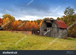 Picture Old Barn Pasture Deer Background Stock Photo 9062095 ... A Pretty Old Barn The Bookshelf Of Emily J Kristen Hess Art Rustic Shed Free Stock Photo Public Domain Pictures Usa California Bodie Barn On Plains Royalty Images Wood Vintage Building Old Home Country Wallpapers Pack 91 44 Barns And Folks Maxis Comments Vlad Konov August Grove Ryegate Rainy Day 3 Piece Pating Print Overgrown Warwickshire England Picture Renovation Inhabitat Green Design Innovation Farm Buildings Click Here For A Larger View