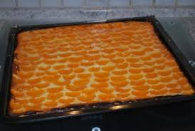 annis mandarin quark kuchen vom blech