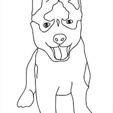 Husky Coloring Pages New Litter Puppies Best Realistic