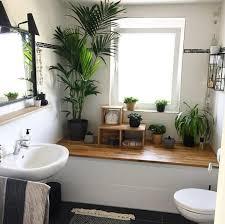 dschungel im badezimmer jungle interior pflanze