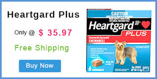 heartgard for cats supplies cat supplies pet supplies pet care products