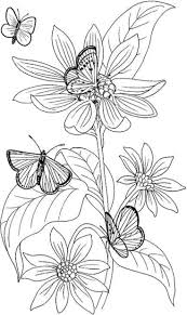 Floral Coloring Pages With Butterflies