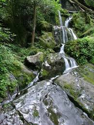 The Sinks Smoky Mountains by The Sinks Great Smoky Mountains National Park All You Need To