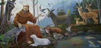 blessing of the animals on the feast day of st francis of assisi