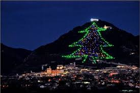 The Biggest Christmas Tree In World Gubbio Umbria