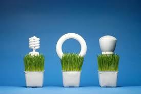 give illumination the green light with fluorescent bulbs orange