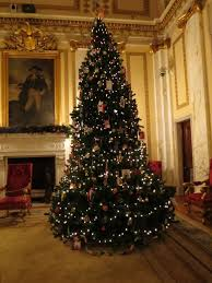 Christmas Tree Shop Warwick Rhode Island by Awesome Picture Of Christmas Trees Ri Fabulous Homes Interior