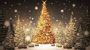 2015 Christmas Tree Sale