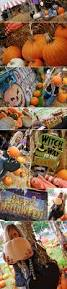 Kc Pumpkin Patch Winery by 13 Best The Farm Project Images On Pinterest Survival The Farm