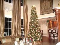 Swivel Straight Christmas Tree Stand Instructions by 100 Krinner Christmas Tree Stand Instructions Christmas