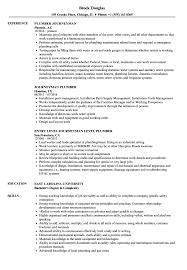 Download Journeyman Plumber Resume Sample As Image File