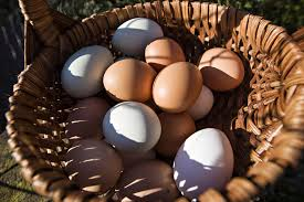 how to tell an egg is fresh