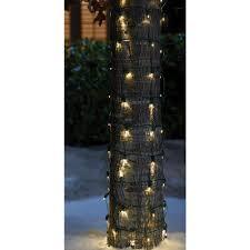 Christmas Tree Cataract Images by Ecosmart 100 Light Led Warm White M5 Light Set 701116 The Home Depot