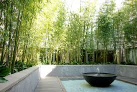 Download Landscape Screening   Garden Design Backyards Gorgeous Bamboo In Backyard Outdoor Fence Roll Best 25 Garden Ideas On Pinterest Screening Diy Panels Best House Design Elegant Interior And Fniture Layouts Pictures Top How To Customize Your Areas With Privacy Screens Unique Ideas Peiranos Fences Durable Garden Design With Great Screen Of House Beautiful Download Large And Designs 2 Gurdjieffouspenskycom Tent Wedding Decoration Pictures They Say The Most Tasteful