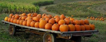 Pumpkin Patch Donnellson Iowa by Don U0027t Miss These 10 Great Pumpkin Patches In Iowa This Fall
