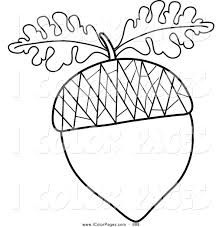 Oak Leaf Coloring Page Clipart Black And White Outline Clipartxtras