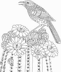 Inspirational Simple Bird Coloring Pages Doddfrankregistration Com Of