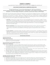 Call Center Training Plan Template Director Resume It Manager 8