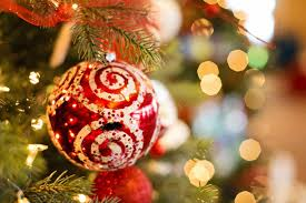 Christmas Tree Preservative Recipe by Holiday Pet Safety Tips Cats And How To Pet Proof Christmas Trees