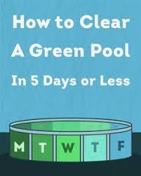 A Green Pool Simply Means That Algae Has Temporarily Taken Over And Begun To Grow In