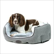 Kong Dog Beds Chew Resistant Pro Dog Bed Covers Petco