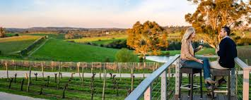 100 For Sale Adelaide Hills Wine