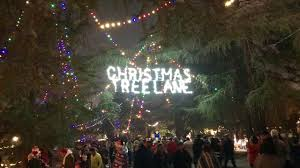 Christmas Tree Lane Fresno by Christmas Tree Lane Van Ness Ave Fresno California Youtube