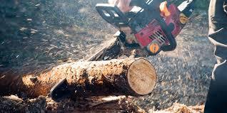100 Budget Truck Dimensions Splitting Firewood How To Split Wood
