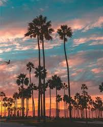 Venice Beach California By Scott Lipps